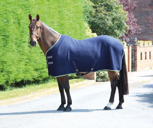 Tempest Original Tech Cooler Rug